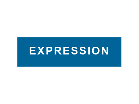 Expression-Digital Catalyst Client
