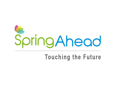 Spring Ahead -Digital Catalyst Client
